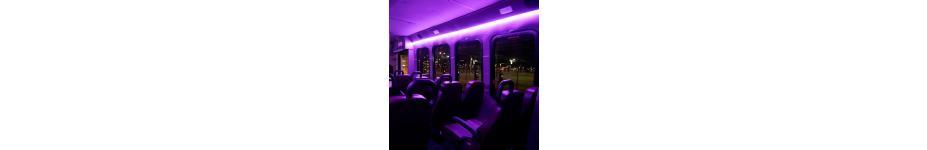Endera Electric Fleet Vehicle LED Interior Lighting