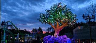 Outdoor Lighting: Wildwood Grove Tree at Dollywood